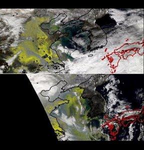 德媒:中国气候保护指数排47位 相较去年